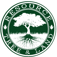 Tree Planting or New Trees Sales with Resource Land and Tree Gift Card 2020 Big Deal Add Sheet Columbia Missouri Groupon Coupon Discount